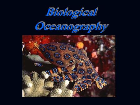 Biological Oceanography. Factors Affecting Life: Light Light Dissolved Nutrients Dissolved Nutrients Temperature Temperature Salinity Salinity Dissolved.