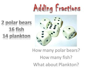 How many polar bears? How many fish? What about Plankton?