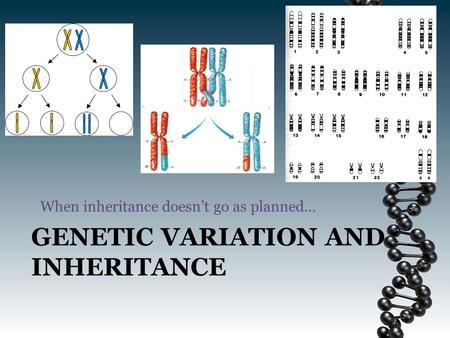 GENETIC VARIATION AND INHERITANCE When inheritance doesn't go as planned…