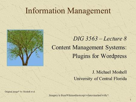 1 Information Management DIG 3563 – Lecture 8 Content Management Systems: Plugins for Wordpress J. Michael Moshell University of Central Florida Original.