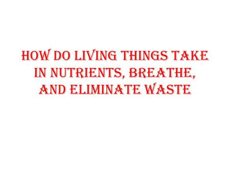 How Do living things take in nutrients, breathe, and eliminate waste.