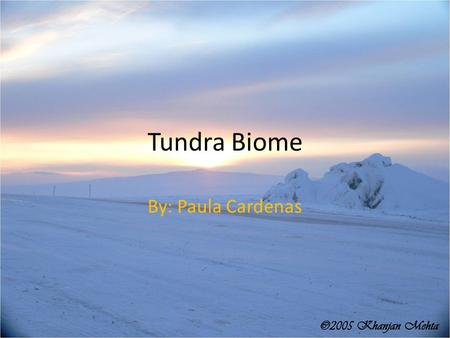 Tundra Biome By: Paula Cardenas. Characteristics Extreme cold climates Low biotic diversity Simple vegetation structure Limitation of drainage Short season.