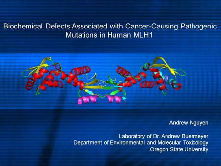 Biochemical Defects Associated with Cancer-Causing Pathogenic Mutations in Human MLH1 Andrew Nguyen Laboratory of Dr. Andrew Buermeyer Department of Environmental.