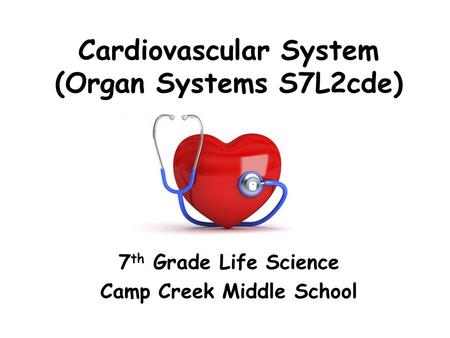 Cardiovascular System (Organ Systems S7L2cde) 7 th Grade Life Science Camp Creek Middle School.