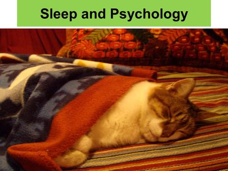 Sleep and Psychology. Why do we sleep? Sleep may be a way of recharging the brain. The brain has a chance to shut down and repair neurons. Sleep gives.