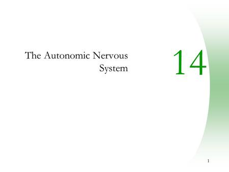 1 14 The Autonomic Nervous System. 2 Autonomic Nervous System (ANS)  The ANS consists of motor neurons that:  Innervate smooth and cardiac muscle and.