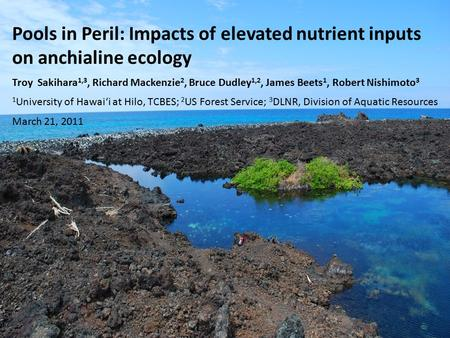 Pools in Peril: Impacts of elevated nutrient inputs on anchialine ecology Troy Sakihara 1,3, Richard Mackenzie 2, Bruce Dudley 1,2, James Beets 1, Robert.