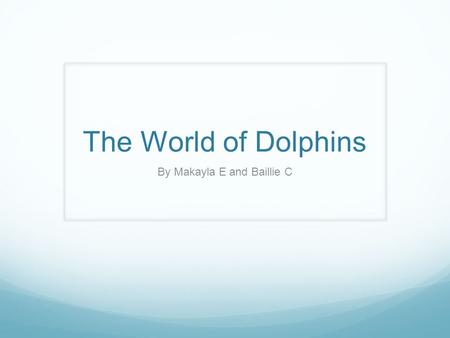 The World of Dolphins By Makayla E and Baillie C.
