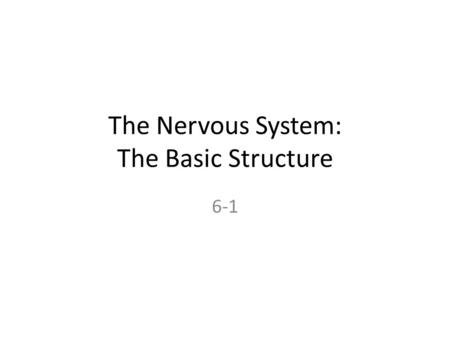 "The Nervous System: The Basic Structure 6-1. From ""Running and ME: A Love Story"" by Joan Nesbit, 1999 It's almost like running is this great friend we."