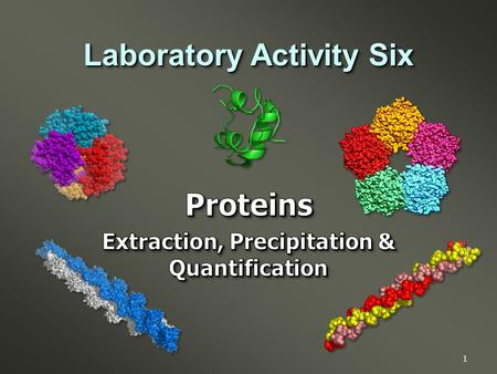 1 Laboratory Activity Six. Introduction to the theory, concerns & applications in the handling of proteins for biochemical studies. Specifically:  Tissue.