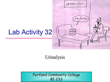 Lab Activity 32 Urinalysis Portland Community College BI 233.
