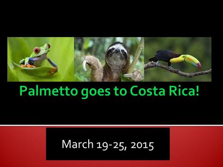 March 19-25, 2015.  Castillo  Cromer  Hopta  Ortiz.