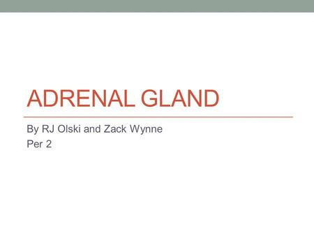 ADRENAL GLAND By RJ Olski and Zack Wynne Per 2. Endocrine System at a glance Regulate Hormones Regulates Body Processes Saliva Sweat.