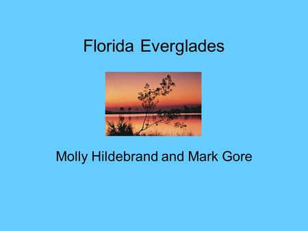 Florida Everglades Molly Hildebrand and Mark Gore.