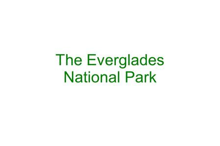 The Everglades National Park. The Everglades, spanning the southern tip of the Florida peninsula, is the largest remaining subtropical wilderness in the.