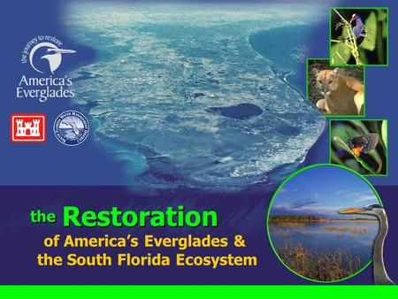 Of America's Everglades & the South Florida Ecosystem the Restoration.