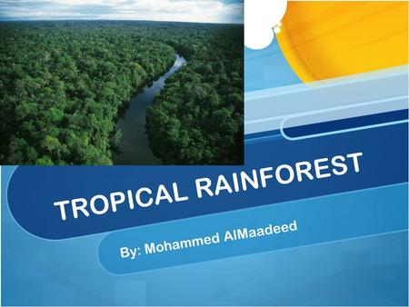 TROPICAL RAINFOREST By: Mohammed AlMaadeed. Introduction Rainforest is a forest with a lot of rain and tall tree. Animals protect their self with the.