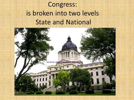 Congress: is broken into two levels State and National.