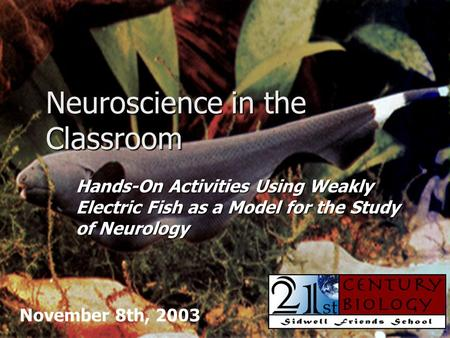 Neuroscience in the Classroom Hands-On Activities Using Weakly Electric Fish as a Model for the Study of Neurology November 8th, 2003.