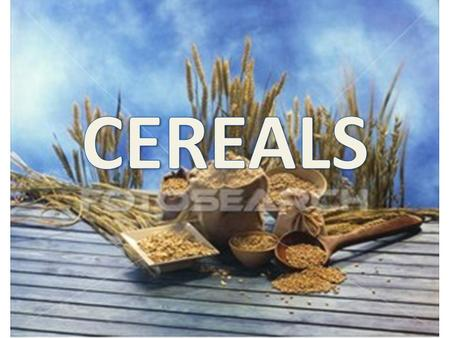 Cereals are a plant food, that are edible seeds from grasses.