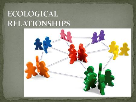 Population – group of individuals of the same species living in the same area, potentially interacting. Community – group of populations of different.