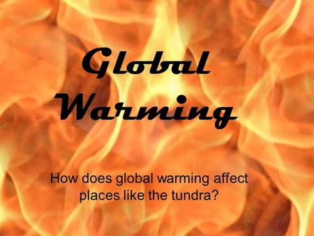 Global Warming How does global warming affect places like the tundra?