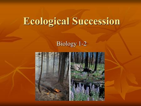 Ecological Succession Biology 1-2. Ecological Succession Ecological succession-process of biological community change. Ecological succession-process of.