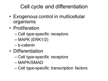 Cell cycle and differentiation