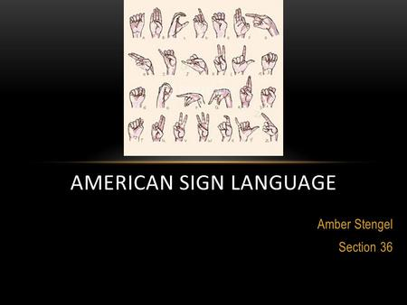 Amber Stengel Section 36 AMERICAN SIGN LANGUAGE. TO CLEAR UP A FEW THINGS... Interpreter Culture Deaf deaf.