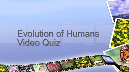 "Evolution of Humans Video Quiz. How do sharks ""see"" their prey? Why do Hammerhead sharks have a hunting advantage? What does the Mimic Octopus mimic?"