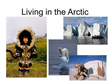 Living in the Arctic.