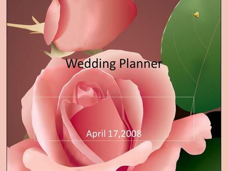 April 17,2008 Wedding Planner. Description The wedding planner takes care of all the bride's needs before, during and immediately after the wedding. The.