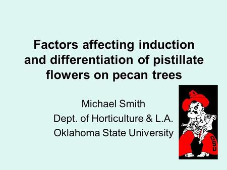 Factors affecting induction and differentiation of pistillate flowers on pecan trees Michael Smith Dept. of Horticulture & L.A. Oklahoma State University.