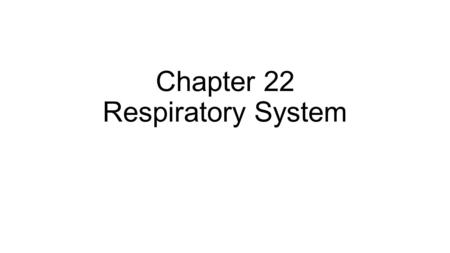 Chapter 22 Respiratory System. Function of the Respiratory System Supply the body with oxygen and dispose of carbon dioxide.