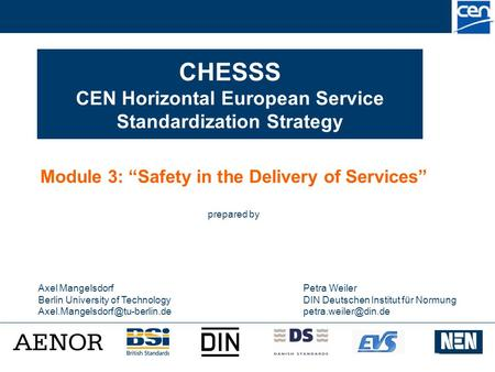 "CHESSS CEN Horizontal European Service Standardization Strategy Module 3: ""Safety in the Delivery of Services"" prepared by Axel Mangelsdorf Berlin University."