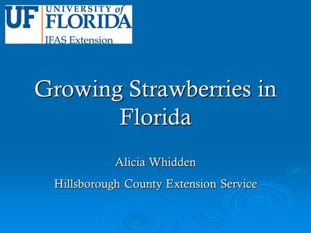 Growing Strawberries in Florida Alicia Whidden Hillsborough County Extension Service.