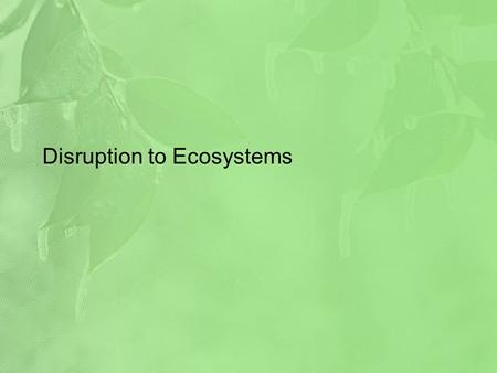 Disruption to Ecosystems. Energy And Nutrients Energy and nutrient flows are fundamental to an ecosystem functioning properly Nutrient Cycle – the feedback.