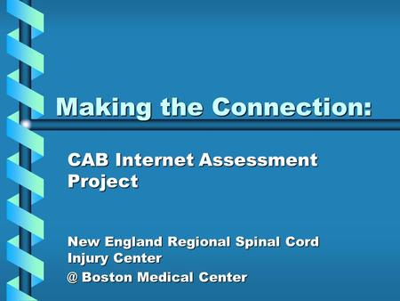 Making the Connection: Making the Connection: CAB Internet Assessment Project New England Regional Spinal Cord Injury Boston Medical Center.