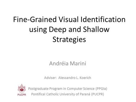 Fine-Grained Visual Identification using Deep and Shallow Strategies Andréia Marini Adviser: Alessandro L. Koerich Postgraduate Program in Computer Science.
