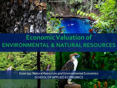 Econ 231: Natural Resources and Environmental Economics SCHOOL OF APPLIED ECONOMICS.
