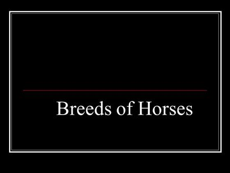 Breeds of Horses. Colors of Horses Bay Bay horses run from light reddish or tan shades to dark brown and mahogany/auburn shades. Bay horses always have.