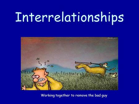 Interrelationships Working together to remove the bad guy.