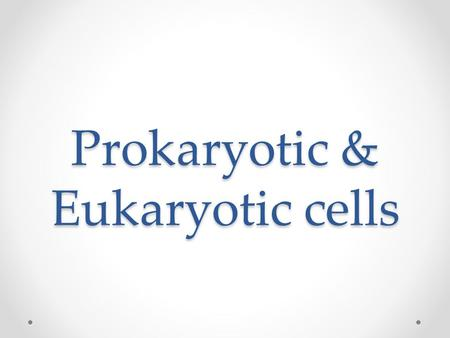 Prokaryotic & Eukaryotic cells. Cells of all living things are incredibly diverse.