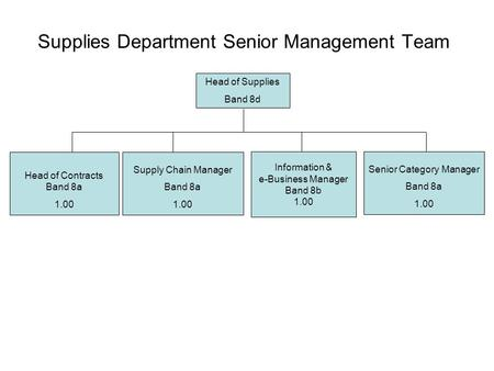 Supplies Department Senior Management Team Head of Supplies Band 8d Senior Category Manager Band 8a 1.00 Head of Contracts Band 8a 1.00 Information & e-Business.