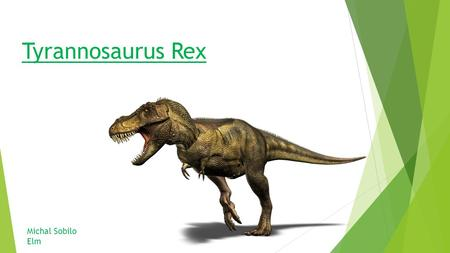 "Tyrannosaurus Rex Michal Sobilo Elm. Some facts about the ""T-Rex"" ""Tyrannosaurus"" comes from the greek word meaning ""tyrant lizard"" and the word ""rex"""