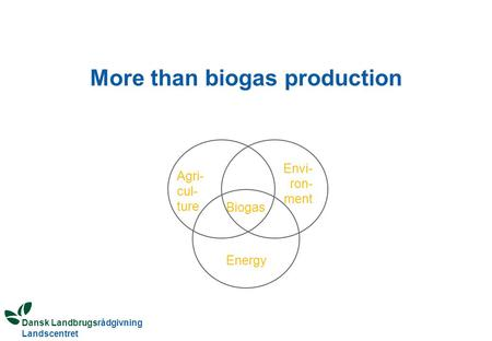 Dansk Landbrugsrådgivning Landscentret More than biogas production Biogas Envi- ron- ment Agri- cul- ture Energy.