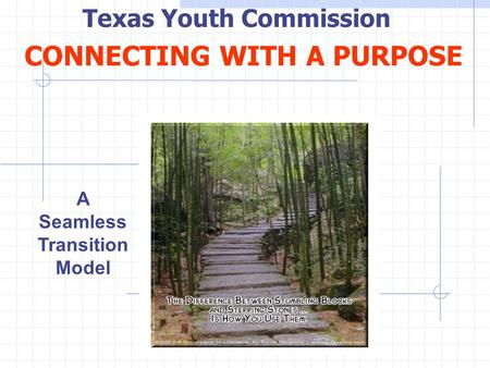 CONNECTING WITH A PURPOSE A Seamless Transition Model Texas Youth Commission.
