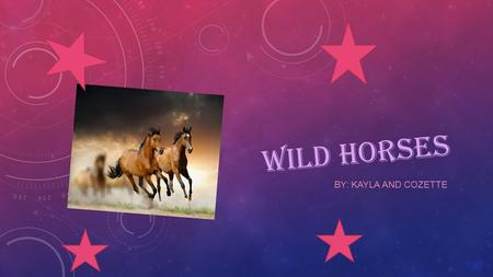 WILD HORSES BY: KAYLA AND COZETTE TABLE OF CONTENTS Introduction-1 Characteristics-2 Locomotion-3 Diet/Food Chain-4 Habitat-5 Adaptations-6 Life Cycle-7.