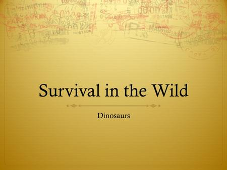 Survival in the Wild Dinosaurs. Dinosaur The word dinosaur comes from the Greek language and means 'terrible lizard'. The word was coined by English paleontologist.