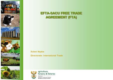 EFTA-SACU FREE TRADE AGREEMENT (FTA) Xolani Nqaba Directorate: International Trade.